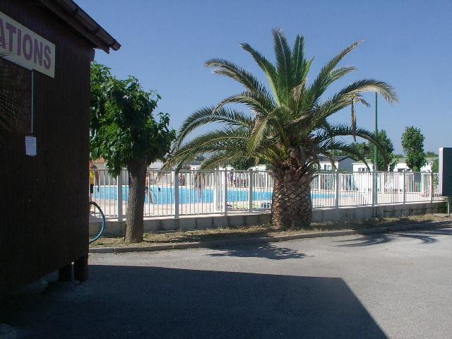 Piscine Location Mobil-home 77592 Saint Aygulf