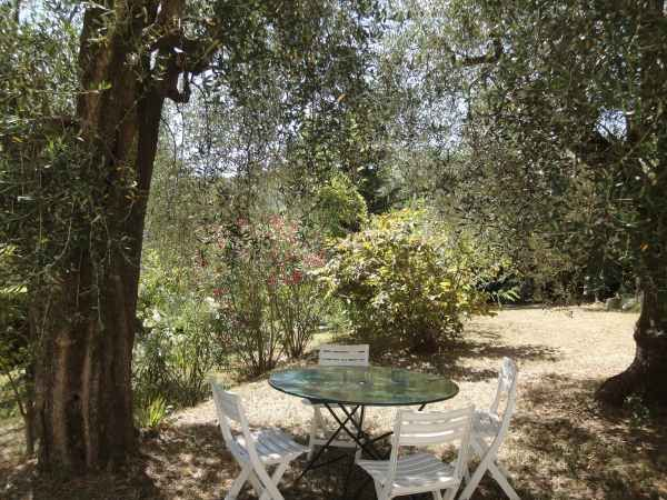 Jardin Location Villa 81732 Cannes