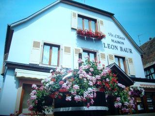 Location Appartement 12507 Colmar