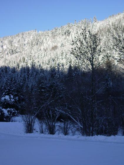 Vue depuis la location Location Chalet 16346 Gérardmer