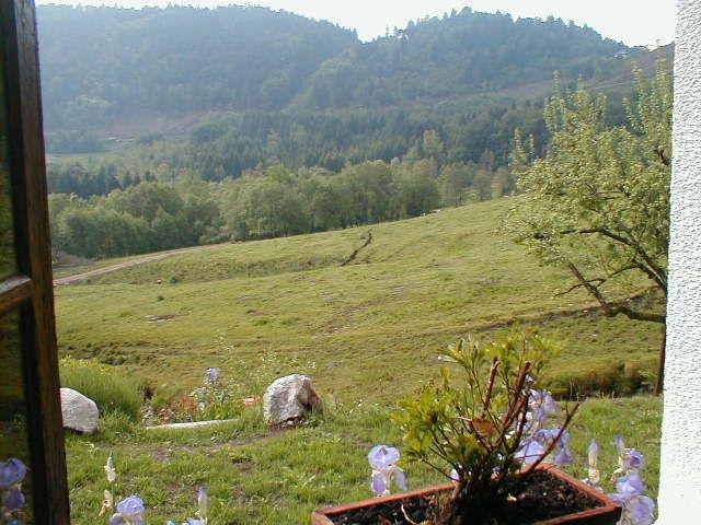 Vue depuis la location Location Chalet 4531 La Bresse Hohneck