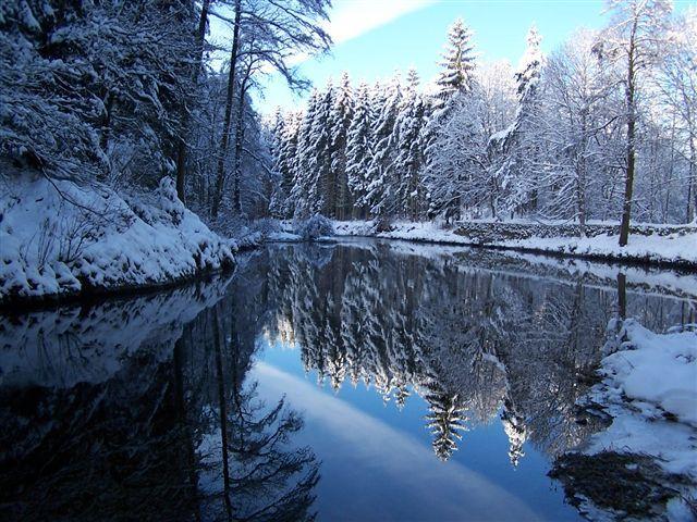 Vue autre Location Chalet 4668 Gérardmer