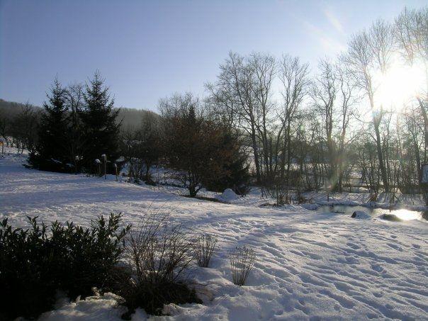 Vue depuis la location Location Maison 53737 Praz de Lys Sommand