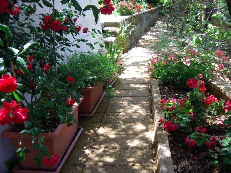 Jardin Location Villa 54358 Capo d'Orlando