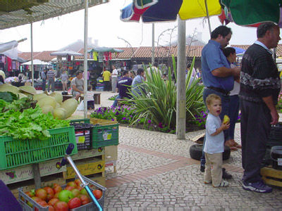Vue autre Location Villa 56968 Figueira da Foz