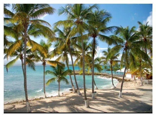 Plage Location Studio 8004 Gosier (Guadeloupe)