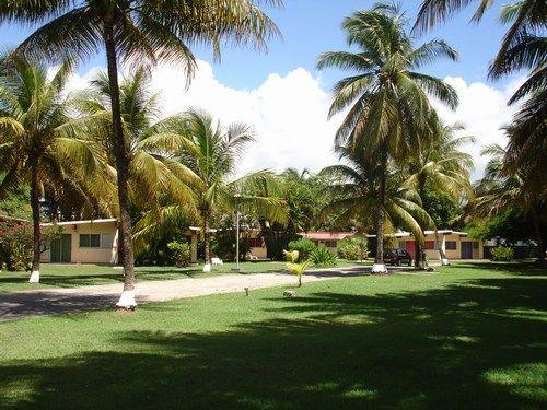 Vue depuis la location Location Bungalow 8029 Sainte Anne (Guadeloupe)