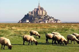 Location Gite 93420 Mont Saint Michel