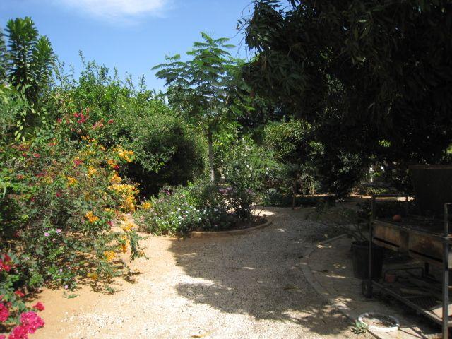 Jardin Location Appartement 89235 La Somone