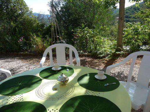 Vue de la terrasse Location Villa 96383 Fayence