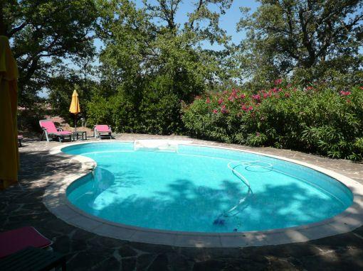 Piscine Location Villa 96383 Fayence