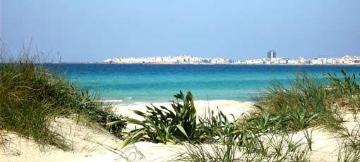 Vue à proximité Location Appartement 78057 Gallipoli