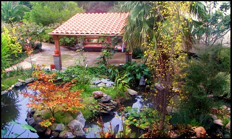 Jardin Location Gite 69374 Saint Cyprien