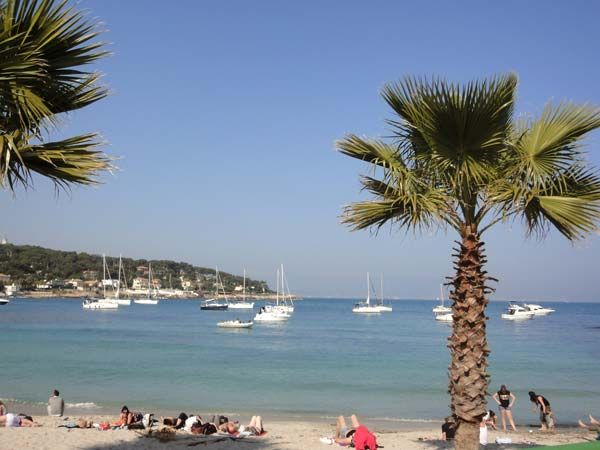 Plage Location Appartement 80731 Cannes