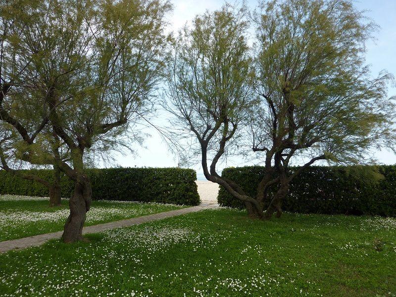 Jardin Location Studio 77936 Senigallia