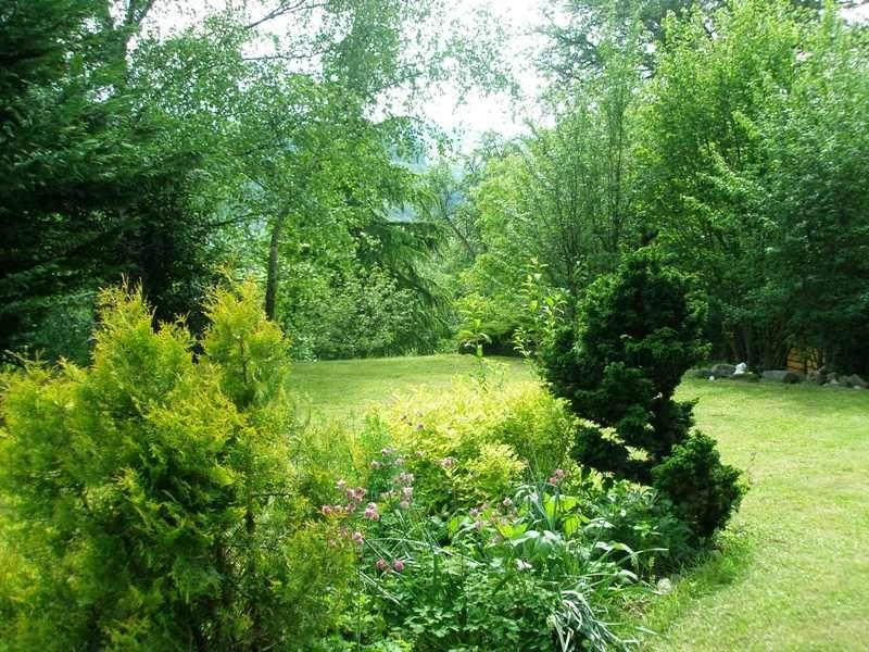 Jardin Location Chambre d'hôte 81209