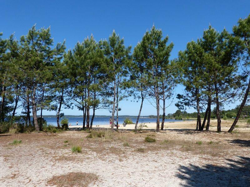Plage Location Villa 112923 Lacanau