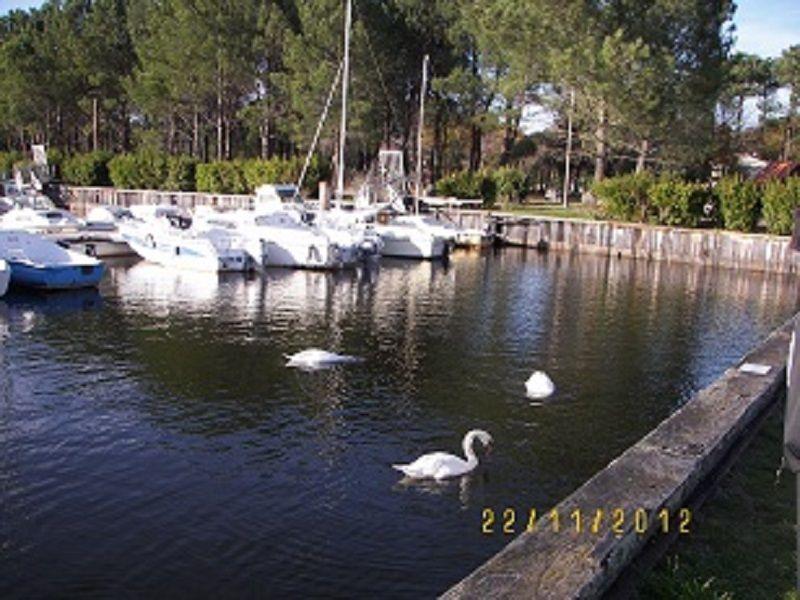 Vue à proximité Location Villa 112923 Lacanau