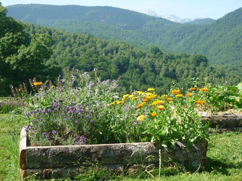 Jardin Location Chambre d'hôte 113357 Bagnères de Bigorre