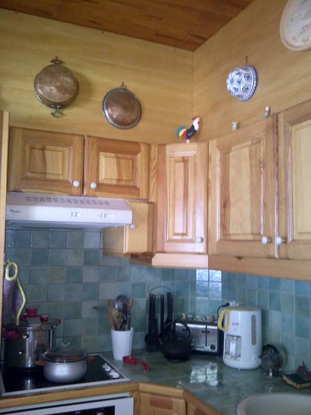 Cuisine américaine Location Appartement 66703 Vars