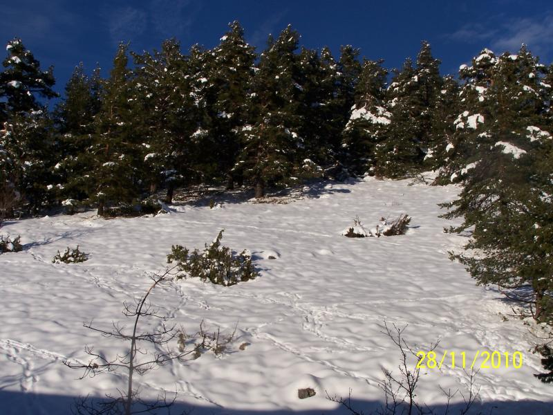 Vue depuis la location Location Appartement 66936 Gréolières Les Neiges
