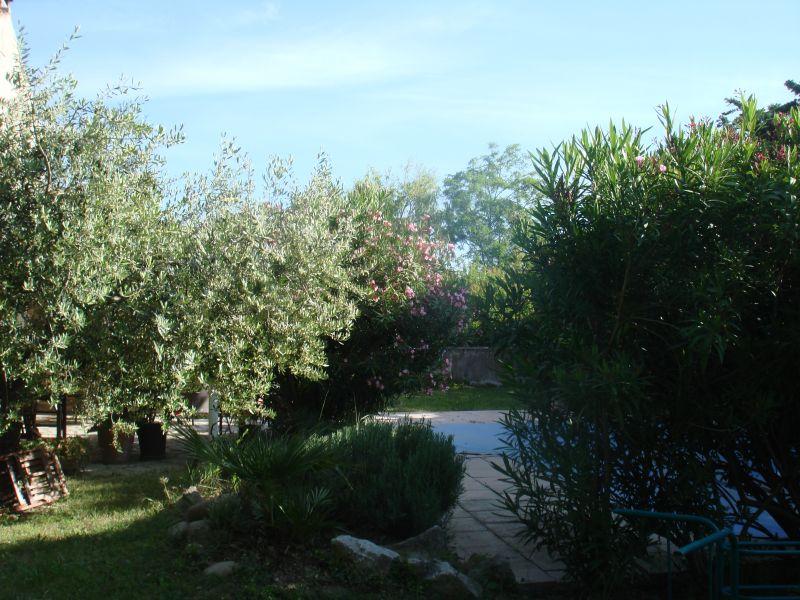 Jardin Location Villa 76186 Eygalières