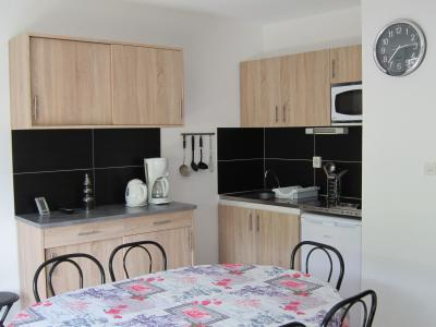 Coin cuisine Location Appartement 80774 Piau Engaly