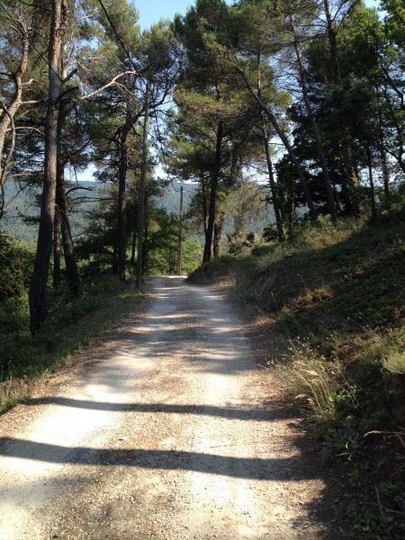 Location Gite 112198 Ménerbes