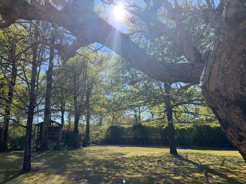 Jardin Location Villa 119006 Le Teich
