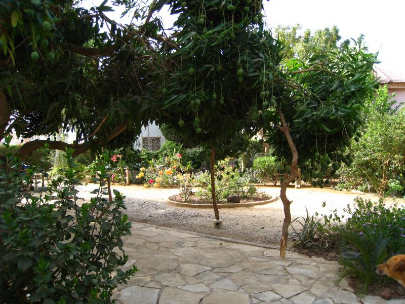 Jardin Location Appartement 69600 La Somone