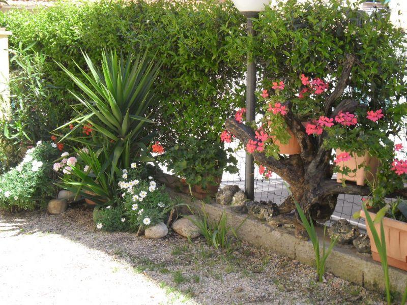 Vue de la terrasse Location Appartement 73249 Rio Marina