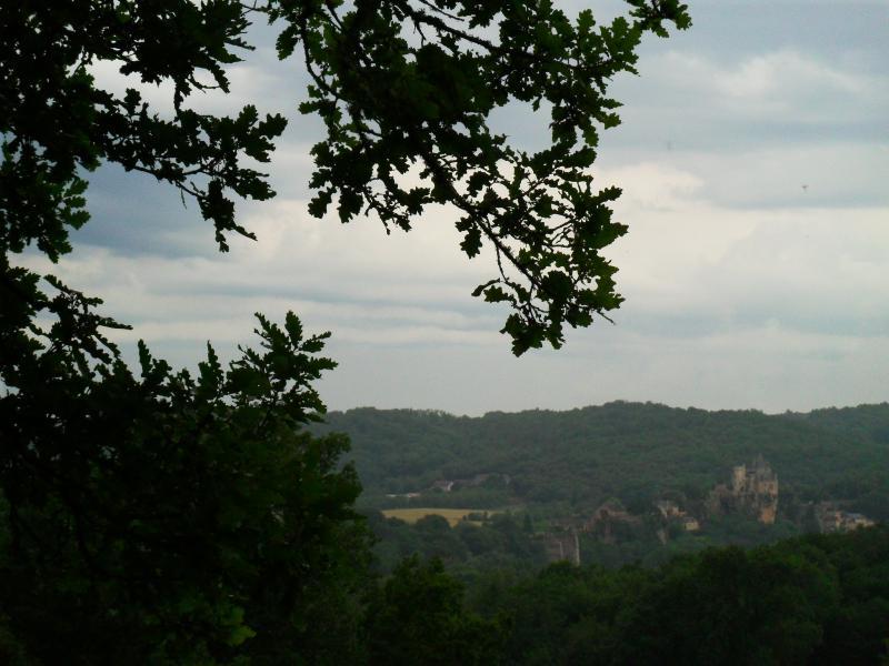 Vue de la terrasse Location Gite 78613 Domme