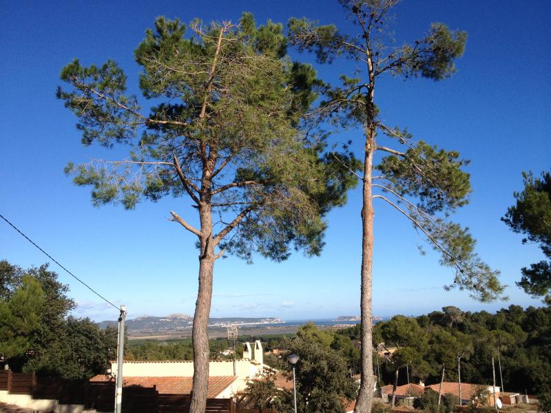 Vue de la terrasse Location Villa 84268 Pals