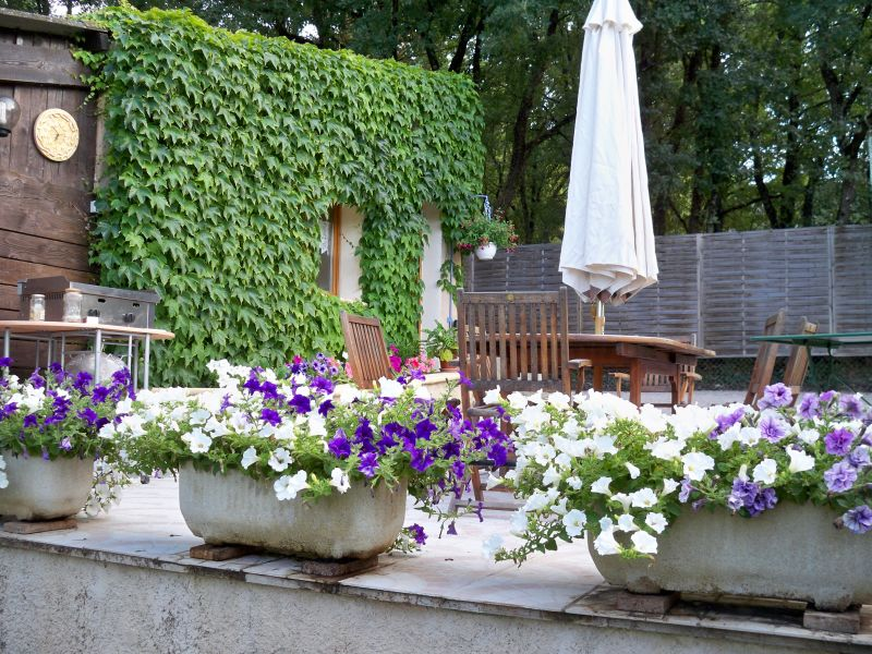 Jardin Location Maison 90128 Forcalquier