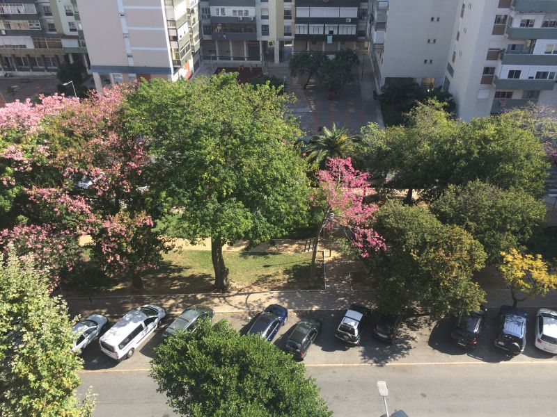 Vue du balcon Location Appartement 106641 Lisbonne