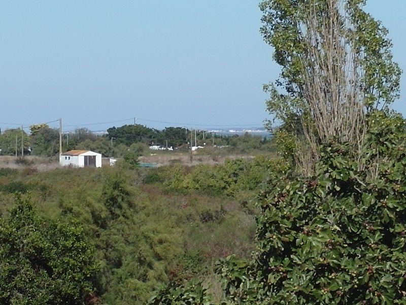 Vue depuis la location Location Maison 107551 Le Château d'Oléron