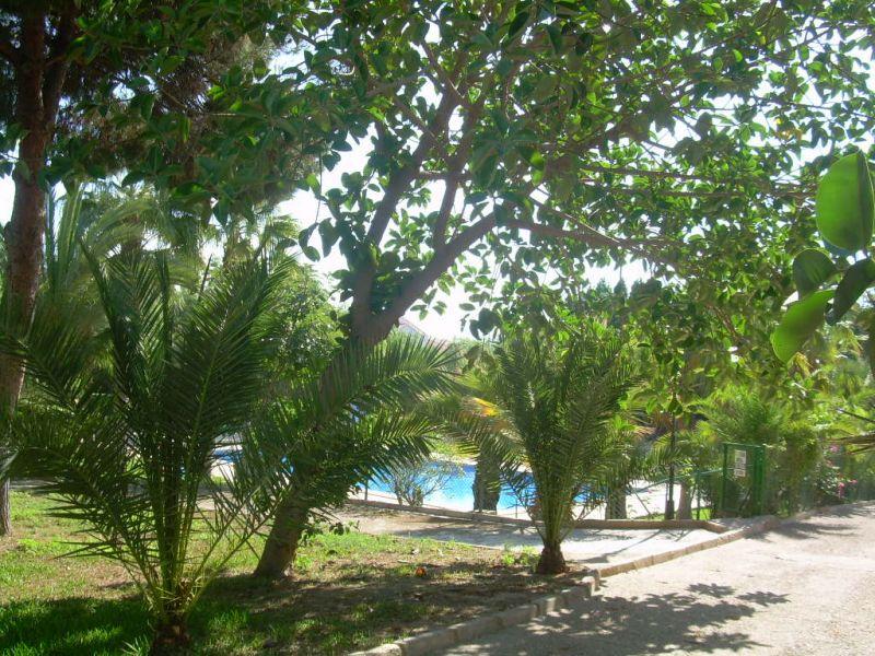 Jardin Location Appartement 112638 Puerto de Mazarrón