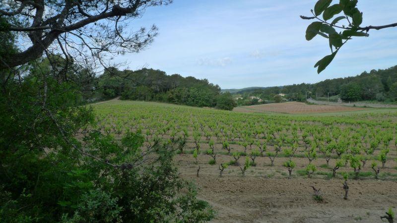 Vue à proximité Location Villa 115618 Lorgues