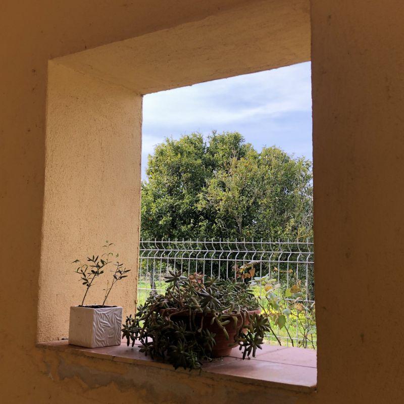 Jardin Location Chambre d'hôte 118414 Matera