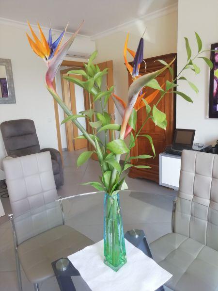 Séjour Location Appartement 119589 Cabanas de Tavira