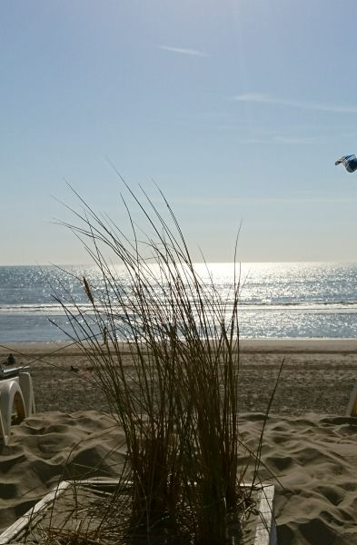 Plage Location Appartement 81592 Le Touquet