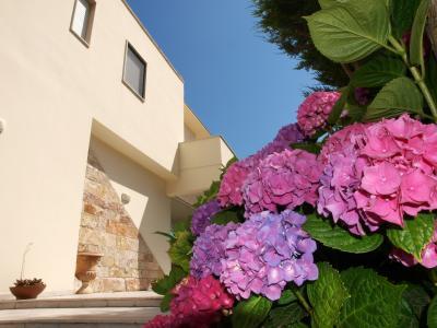 Jardin Location Chambre d'hôte 82785 San Foca