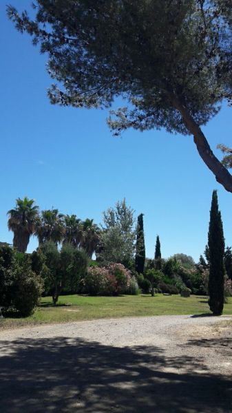 Jardin Location Appartement 93460 Saint Tropez