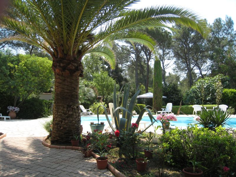 Vue depuis la location Location Villa 103900 Saint Raphael