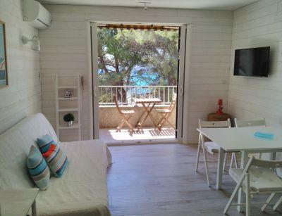 Location Studio 105596 Saint Cyr sur Mer