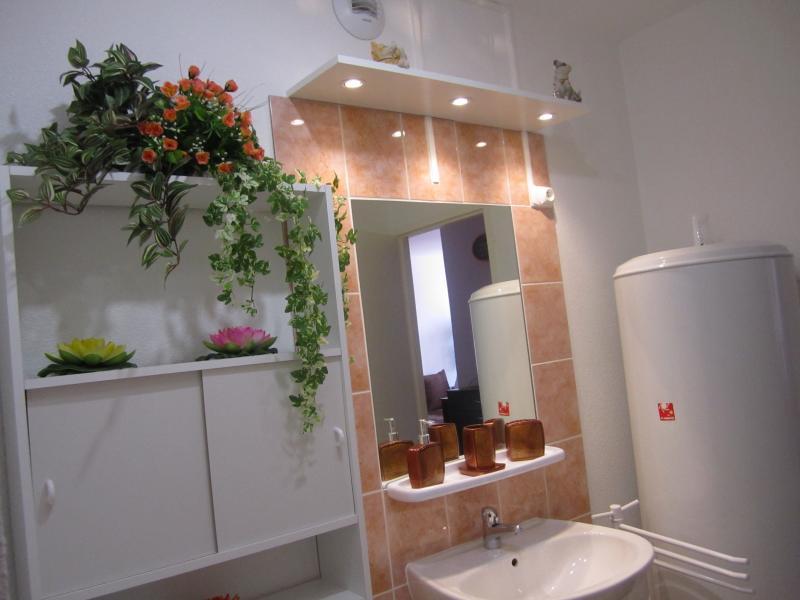 Salle d'eau Location Appartement 66948 Les Rousses