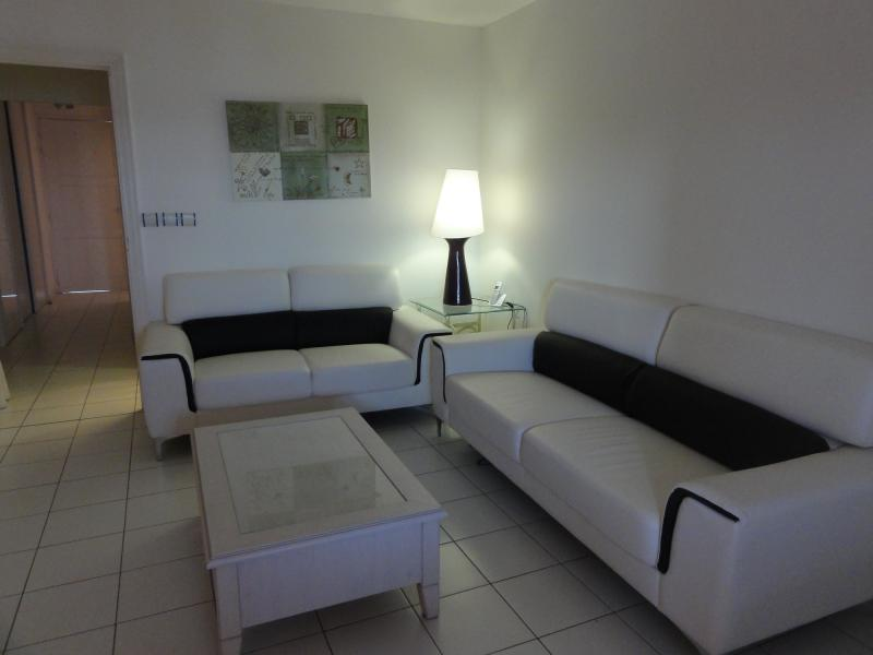 Salon Location Appartement 82732 Saint Francois