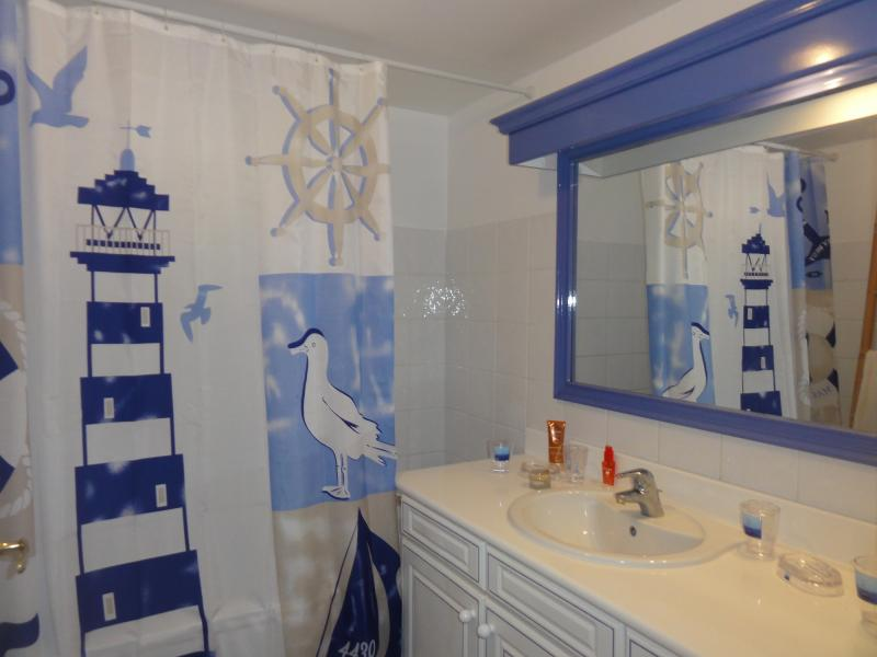 salle de bain Location Appartement 82732 Saint Francois