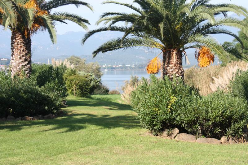 Jardin Location Villa 84149 Porto Vecchio