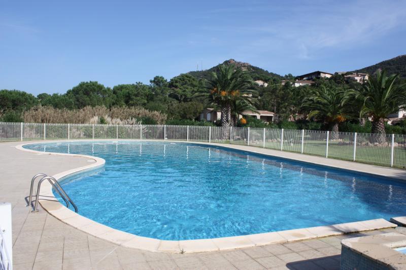 Piscine Location Villa 84149 Porto Vecchio